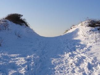 Het einde van de duin-winterwereld