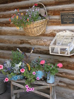 Relax on the porch, see the sites or enjoy local entertainment while staying at a Colorado bed and breakfast inn