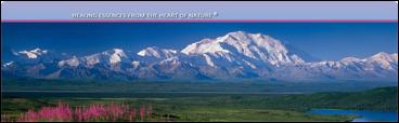 Beschrijving: Alaskan Essences