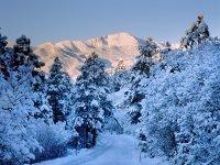 February - Wintery Scene