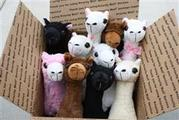 PacaBuddies plush alpaca toys