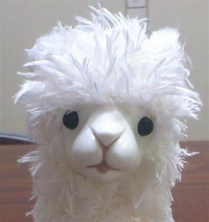 Alpaca Wind Up Toy