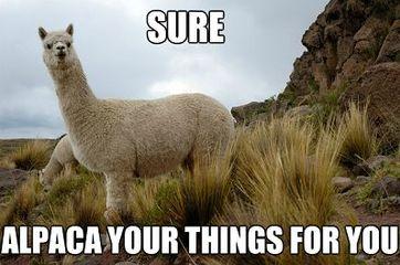 alpaca your stuff