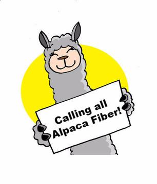 alpaca fiber call