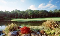 Fota Island Golf impression