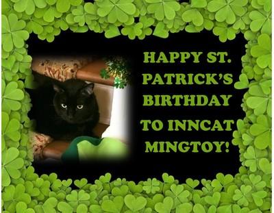 Happy St. Pat's Birthday to InnCat Mingtoy!
