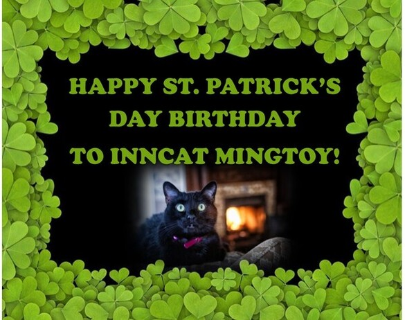 Mingtoy, Holden House official InnCat greeter!