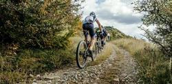 bron: https://www.ontdekronse.be/nl/mountainbiken