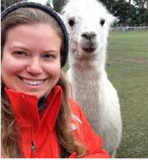 Visit an alpaca farm near you and take an Alpaca Selfie!