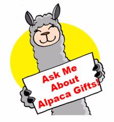 alpaca gift guide